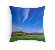 Blue Sky - Green Grass Throw Pillow