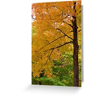 Falling again Greeting Card