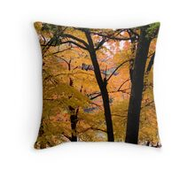 Seeing more fall Throw Pillow