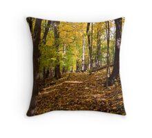 Fall Walk Throw Pillow