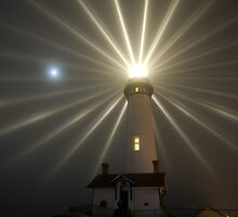 Pigeon Point Lighthouse by Cathy P. Austin