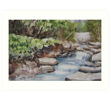 River Rush Art Print