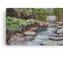 River Rush Canvas Print