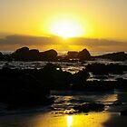 One Tree Point Sunrise by Melanie Roberts