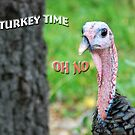 It's Turkey Time by Barbara Manis