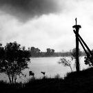 """Pole Sitting""  by Mike Larder"