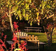 Boeger Winery Picnic by NancyC