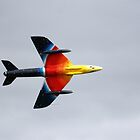 Hawker Hunter F4 by Wayne Gerard Trotman