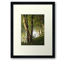 Looking Through Trees Along The Seine Framed Print
