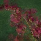 Cranberry Tree by artsthrufotos
