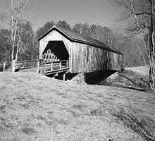 Ten Rivers Bridge Photographic Print
