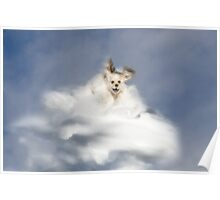 Angel Puppy Poster