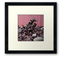 Rockzilla Framed Print