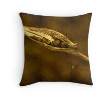 Seed Pod (Milkweed) Throw Pillow