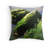 Serenity on The Seine no.2 Throw Pillow
