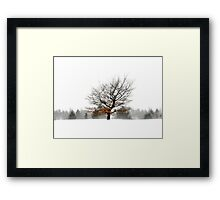 A Shade of Winter Framed Print
