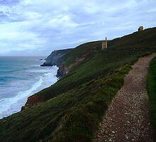 Path to Towanroath Engine House by Mark Wilson