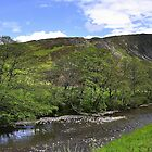 Sma' Glen. #2 by Finbarr Reilly