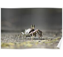 Crab Louie Poster