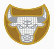bullring by 4thquarter