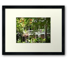 Green Light and Shadow Framed Print