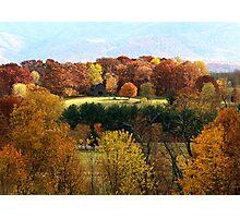 Autumn Niche... Photographic Print