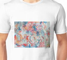 This is how it got here Unisex T-Shirt