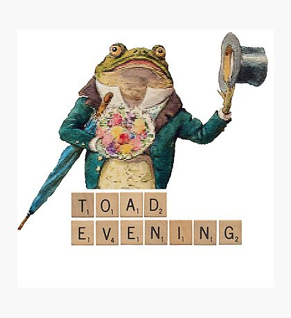 Toad Evening! Photographic Print