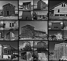 Cotton Field - Out Buildings by Michael Rubin