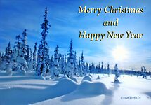 Merry Christmas and Happy Holidays by Pam Moore