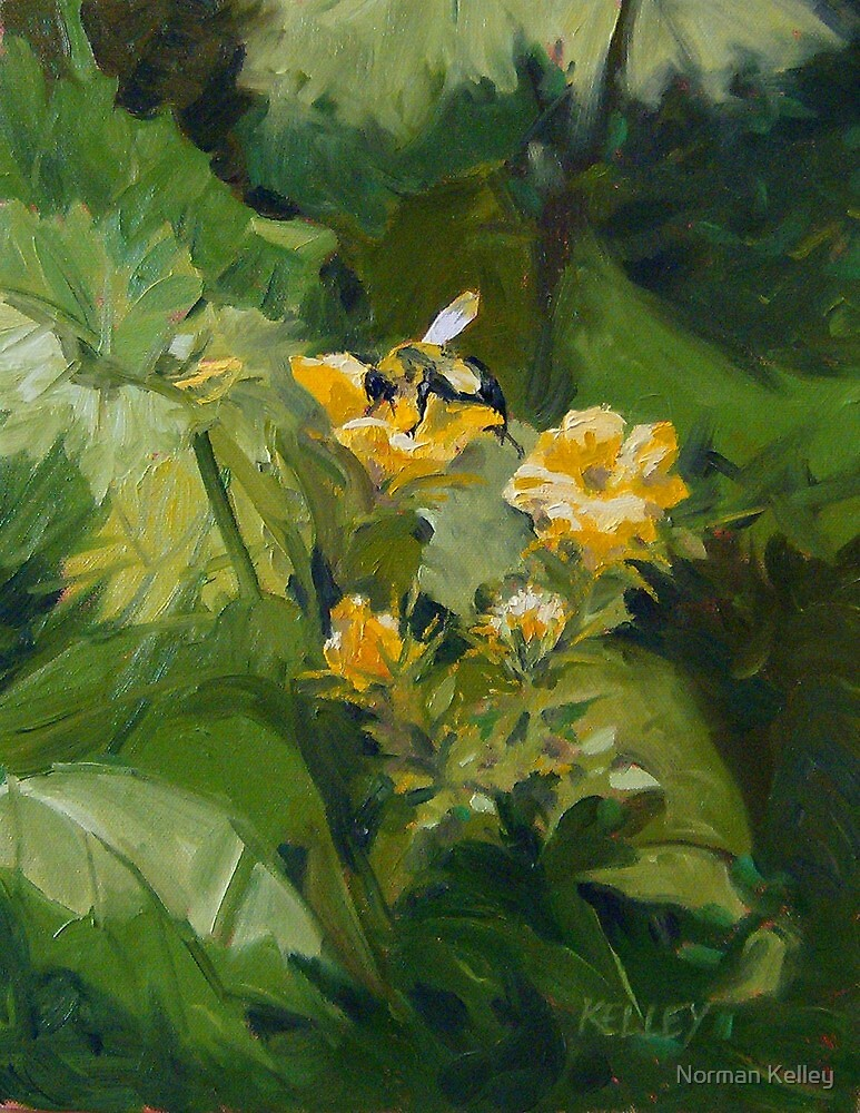 Cucumber Blossoms by Norman Kelley