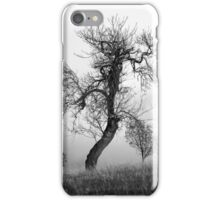 Bare Trees In Winter iPhone Case/Skin