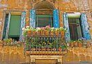 Venetican Balconi by imagic