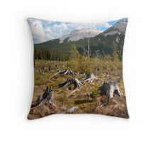 Deforestation or forest fire? Throw Pillow