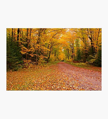 Yellow Walkway Photographic Print