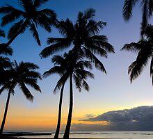 Hawaii by Randy  Le'Moine