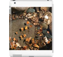 Franklin River pebbles, Tasmania iPad Case/Skin