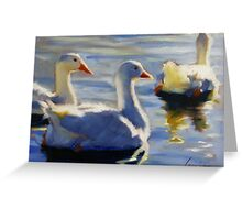 Duck Pond in Evening Greeting Card
