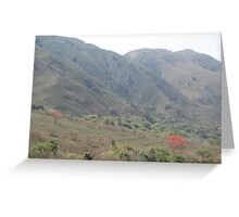 Mountain scenery with flowering trees Greeting Card