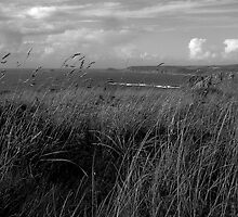 Lands End towards Whitesand Bay by newbeltane
