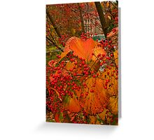 Fall at Winterthur Greeting Card