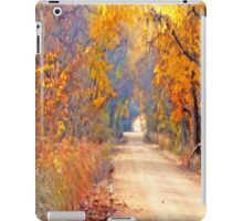 A Painter`s Light iPad Case/Skin