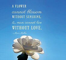 A Flower Cannot Blossom Max Muller Quote by Nalin Solis