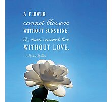 A Flower Cannot Blossom Max Muller Quote Photographic Print