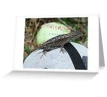 Swift on Soccer Ball Dog Toy Greeting Card