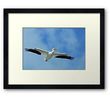 If I Could Fly With Them Framed Print