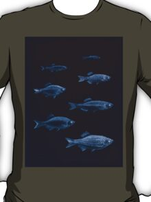 The fishes of India by Francis Day 150 - Inverted - Danio albolineatus Devario Spinosus T-Shirt