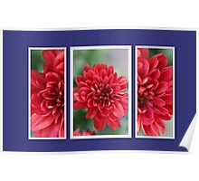 Red Mum Triplets Poster