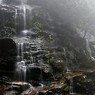 Sylvia Falls by Tatiana R
