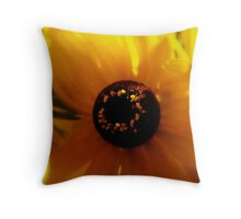 Shining Bright  Throw Pillow